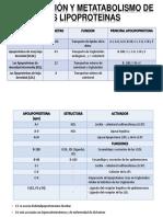 Clasificación y Metatabolismo de Las Lipoproteinas