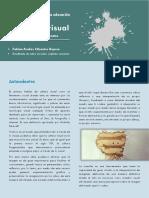 Didactica-Cultura visual