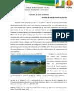 Conceito de meio ambiente.docx