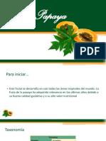 monografía papaya