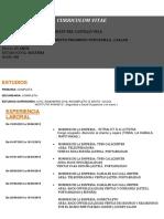 DEL CASTILLO VELA.docx