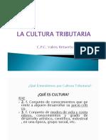 2019.15 feb - Cutura Tributaria - MTPE.pdf