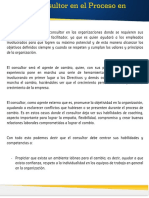 Papel_Consultor
