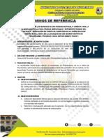 TDR PARA PUENTE SAN GENARO.docx