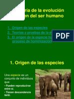 Diapositivas - Teoria - Evolucion