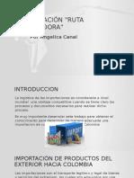 Actividad de aprendizaje 15 Evidencia 2 Presentacion Ruta Importadora.pptx