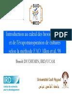 coursDuchemin0603.pdf