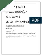 Proyecto de Investigación Del Manejo Caprino.docx 2014