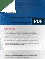 4. FLOTACION.pptx