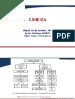 26. Candida, cripto, actino.pdf