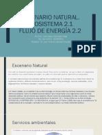 2.1 Ecosistema 2.2 Flujo de Energia