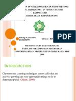 Presentation 01.pptx