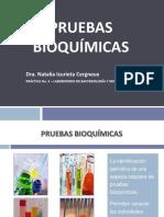 Laboratoriono 5 Pruebasbioqumicas 110529225758 Phpapp02