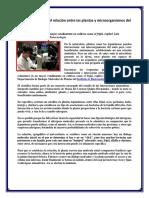 Estudian en La UNAM Relación Entre Las Plantas y Microorganismos Del Suelo