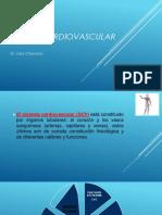sistema cardiovascular.virg.pptx