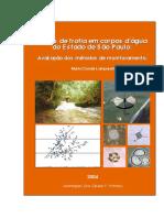 TeseLamparelli2004.pdf