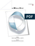 Analysis of the Moebius Strip