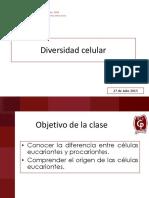 8° Presentación 17_ Tipos de celulas