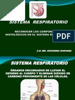 Teoria 6 Sistema Respiratorio_compressed_20190415184845