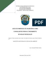 Tesis de Gerardo Final 030210