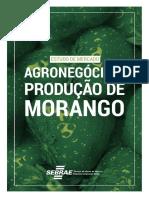 Produção de Morango Na Bahia_2