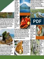 Bali Report