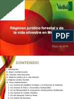 Regimen Juridico Forestal y de La Vida Silvestre IJF (2)
