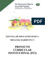 PCI ROSAURA.docx