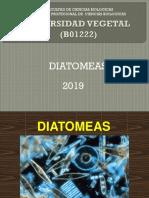 diatomeas.pdf