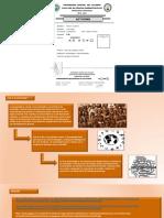 dfsdf.pdf