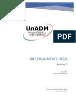 BBM1_U3_A1_ADMR.docx