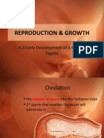 272063029 4 3 Early Development of a Human Zygote
