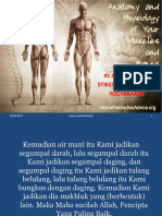 Anatomi_fisiologi_muskuloskeletal_ppt.ppt