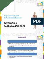 17. Patologías Sistema Circulatorio .pdf