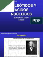 2.3.Nucleicos