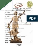 las garantías frente a la administración de justicia y las garantías constitucionales 11.pdf