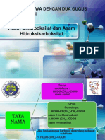 Asam Dikarboksilat dan Asam Hidroksikarboksilat