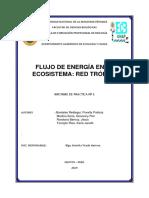 IMFORME - ECO.docx