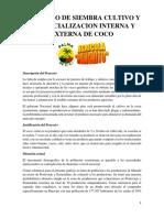 Proyecto Siembra de Palma de Coco