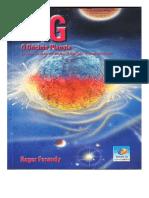 Erg- O Decimo Planeta- Roger Feraudy