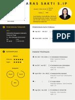 CV OKKY PDF-3
