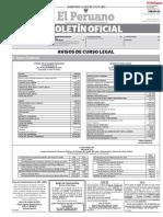 estatuto-2018-en-el-peruanopdf.pdf