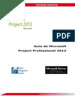 Project Professional 2013 Universidades