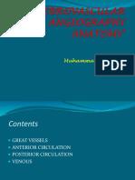 CVD Anbatomy