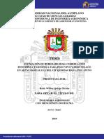 Quispe_Ticona_Wilber.pdf