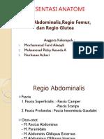 REGIO DORSUM ANATOMI
