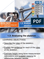 1.03 Analysing the Skeleton