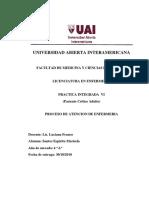 Pae Paciente Critico Adulto 2018 Marisela Imprimir Ya (1) (1)