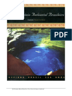 A_producao_mineral_brasileira_cinco_secu.pdf