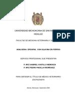 Analgesia Epidural Con Xilacina en Perros